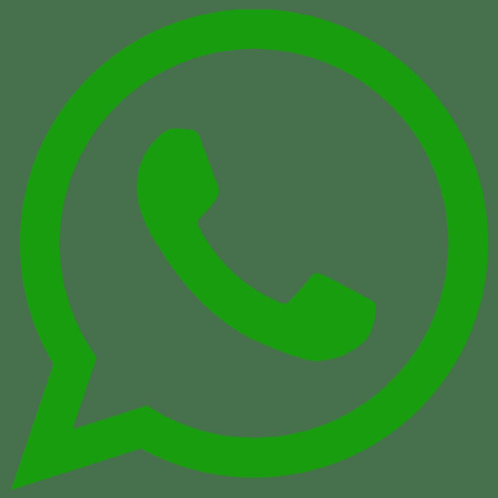 Risultato immagini per whatsapp logo